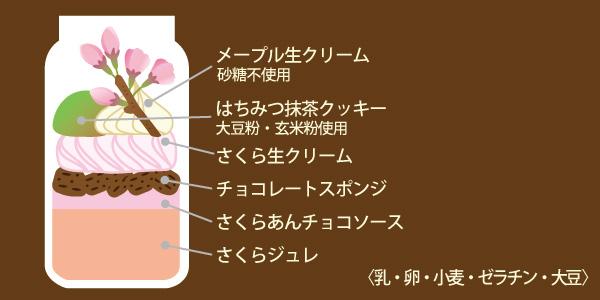 Bon-Sai 桜 断面