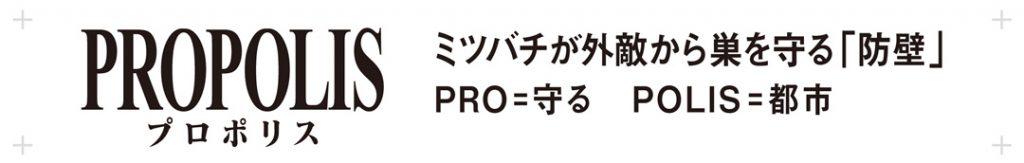 PROPLIS:PRO=守る、POLIS=都市